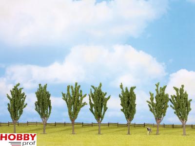 7 Poplars